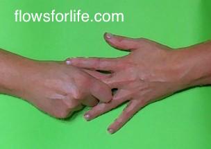 jjin shin jyutsu holds middle finger 2