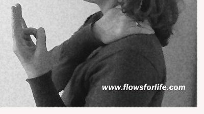 Flows For Life Mediator